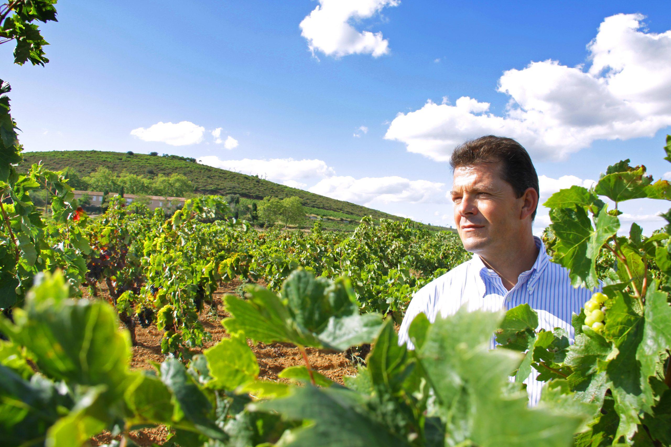 Bruno Laboucarie au milieu d'une vigne